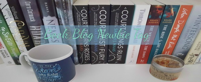 book-blog-newbie-tag-photo