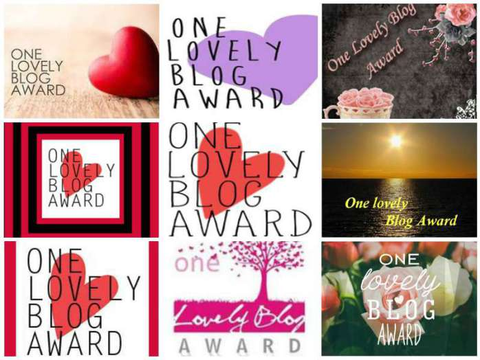 One-Lovely-Blog-Award-Collage[1]