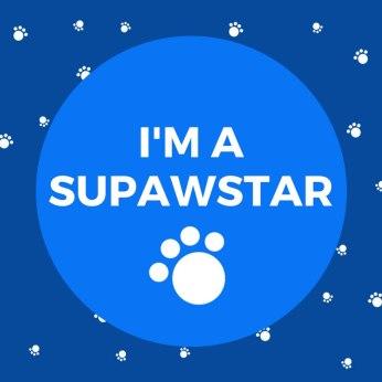 im-a-supawstar-pet-blogger