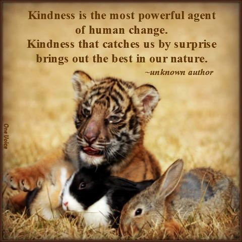kindness-is-the-most-powerful-agent-of-human-change
