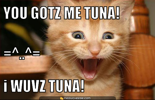 tuna-cat
