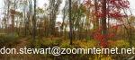 woods email address bottom