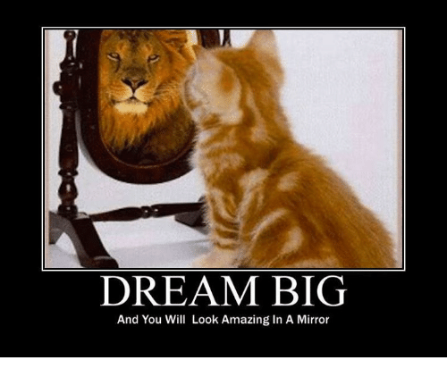 dream-big-and-you-will-look-amazing-in-a-mirror-24327199